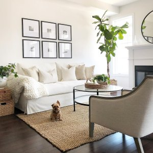 new design living room furniture. Is it just me or is coming home to your dog the best part of taking Room Inspiration  Home Decorating Ideas Crate and Barrel