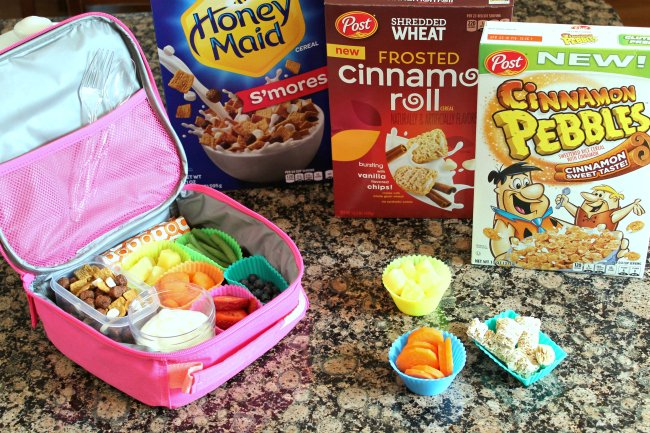 Lunch Box Idea For A Picky Kid - Foody Schmoody Blog | Foody
