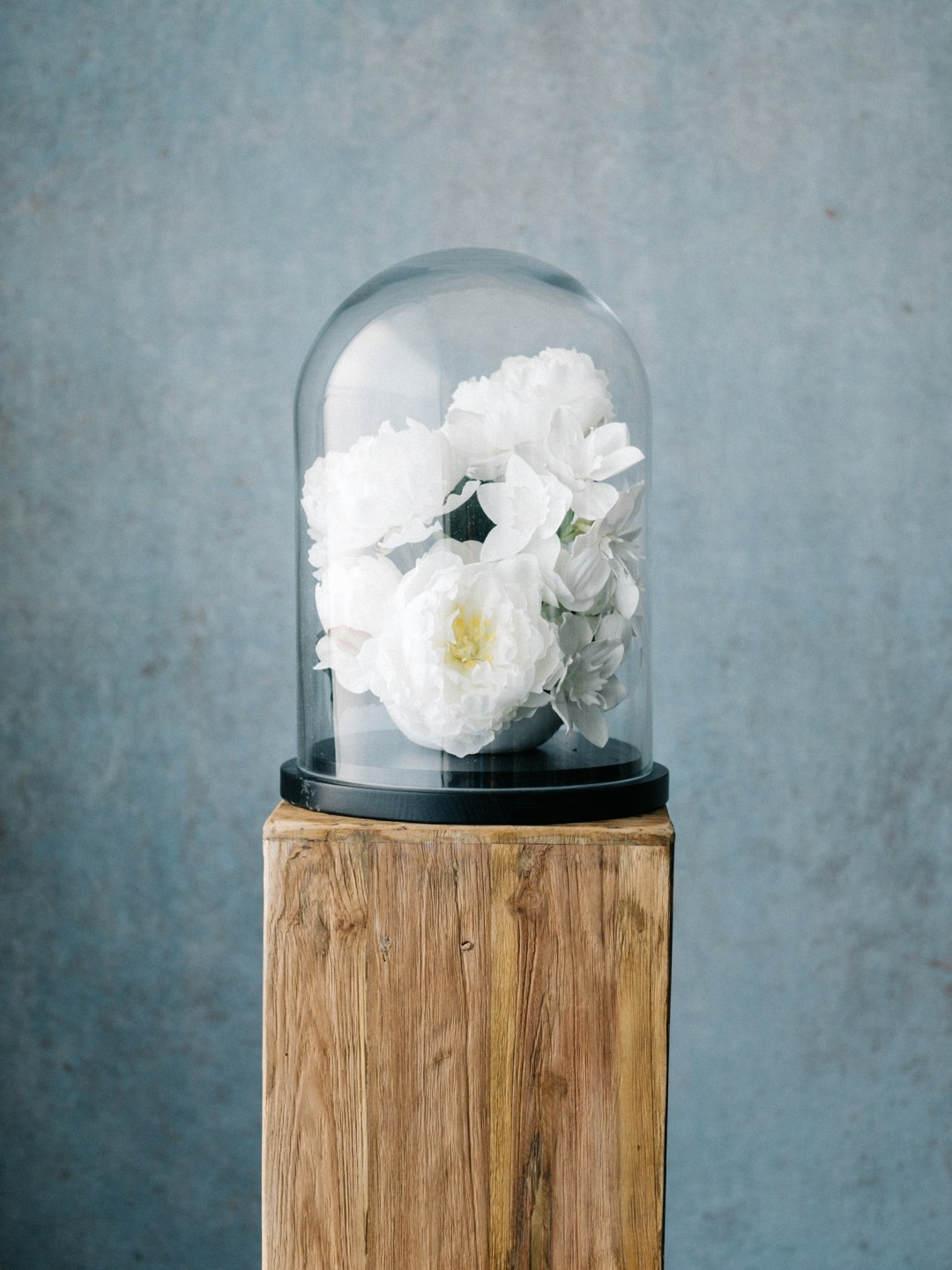 white flowers are displayed in a glass container on a wood shelf