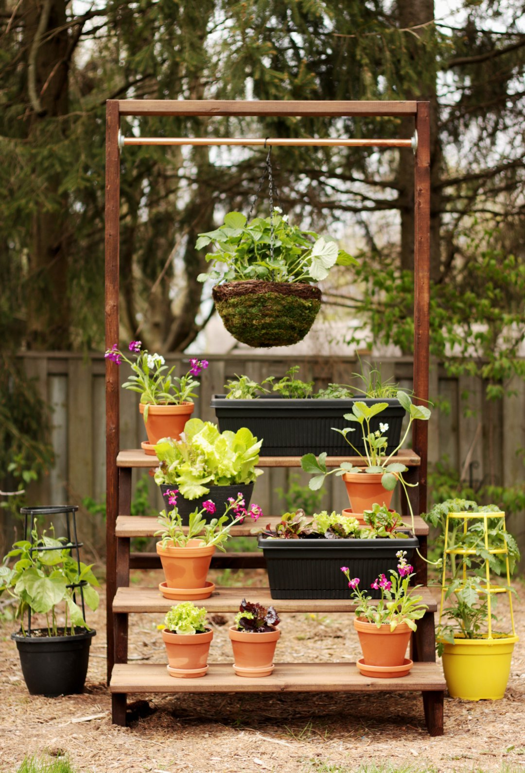 DIY Staircase Plant Stand - Empress of Dirt on Stand For Hanging Plants  id=94397