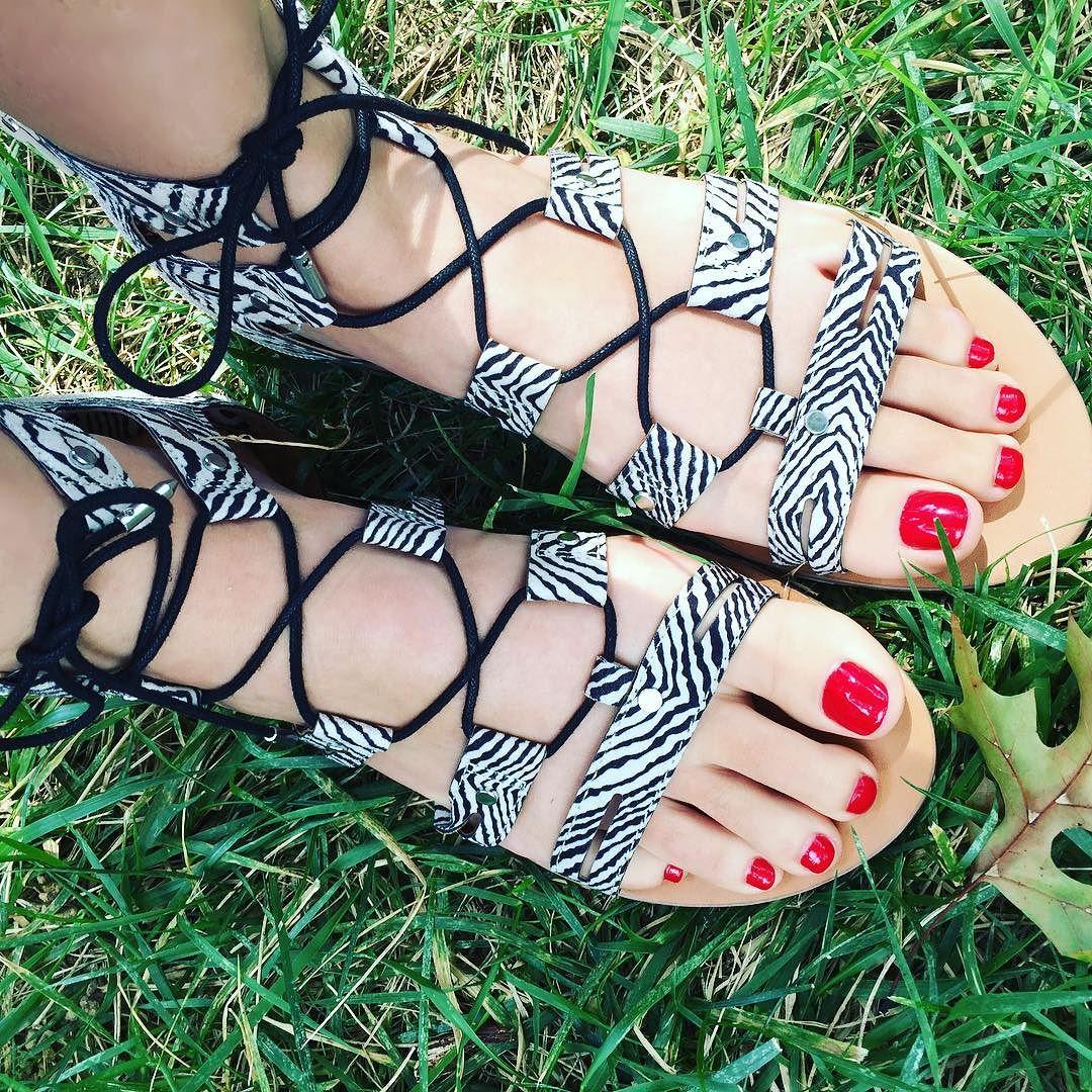 78871ec8181 Women s dv Gracelyn Lace Up Gladiator Sandals - 5.5   Target