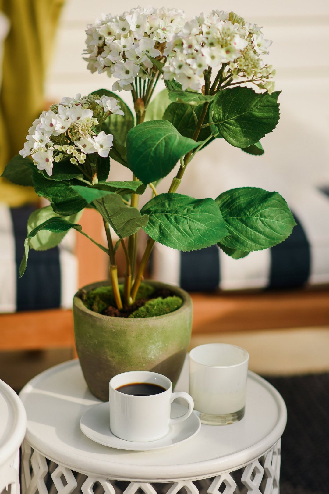 Close up of hydrangea plat, coffee in cup, and candle on top of white table