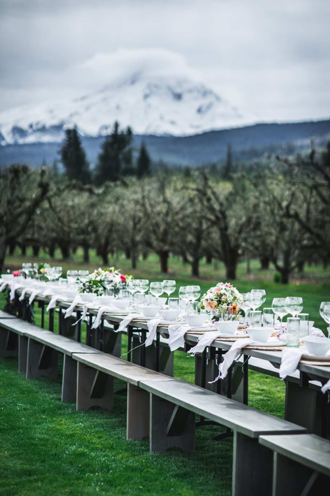 Long table set up for supper with mountains and woods in the background