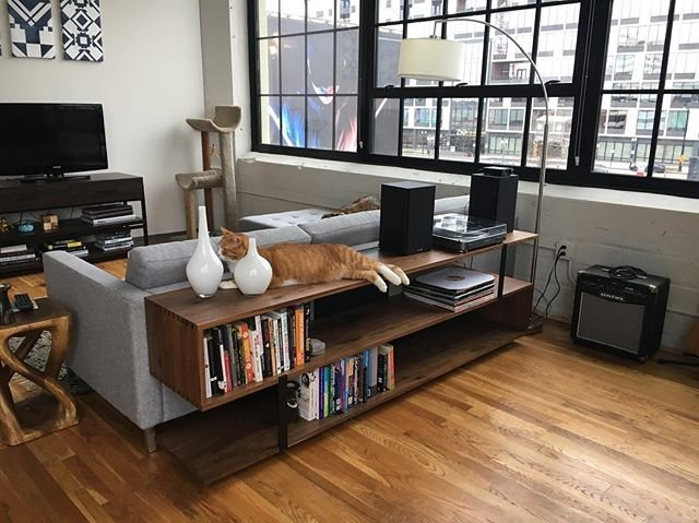 In an apartment with big windows, the Austin media console storing records and other knick-knacks, with a cat sitting on top
