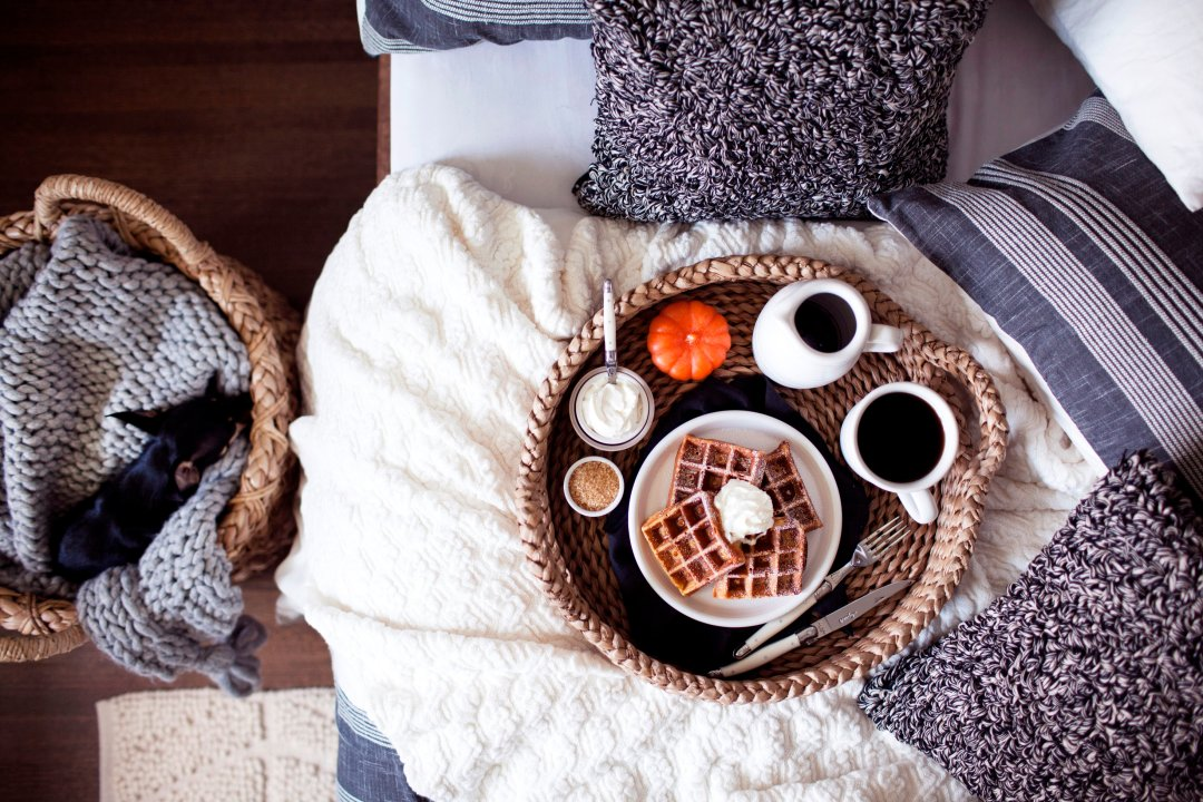 Breakfast in bed next to dog in basket