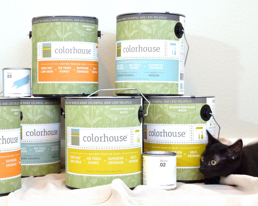 A stack of orange, blue, yellow and white colorhouse paint buckets next to a black kitten