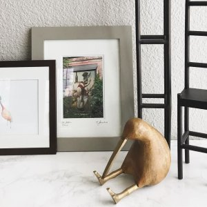 crate and barrel living rooms. Mornin  I know this little Kiwi is supposed to be standing upright Room Inspiration Home Decorating Ideas Crate and Barrel