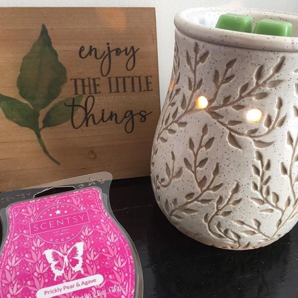 Prickly Pear Agave Scentsy Bar