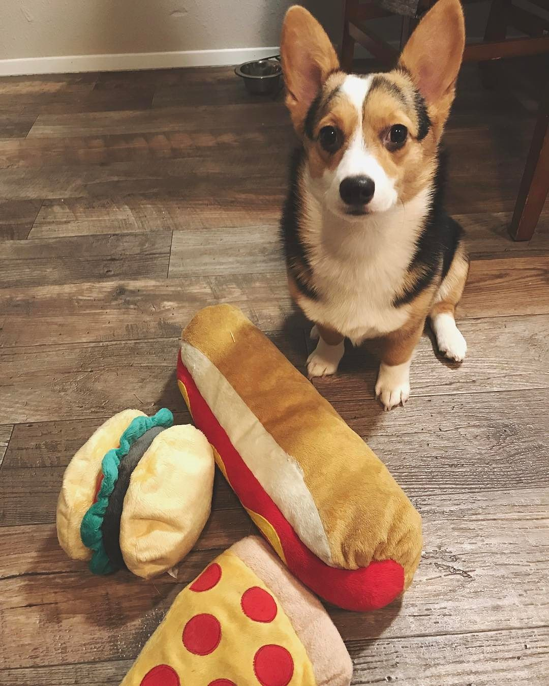 Plush Dog Toy Pizza With 2 Squeakers And Crinkle Yellow M
