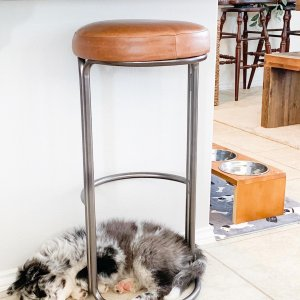 Fine Cora Leather Counter Stool Ibusinesslaw Wood Chair Design Ideas Ibusinesslaworg