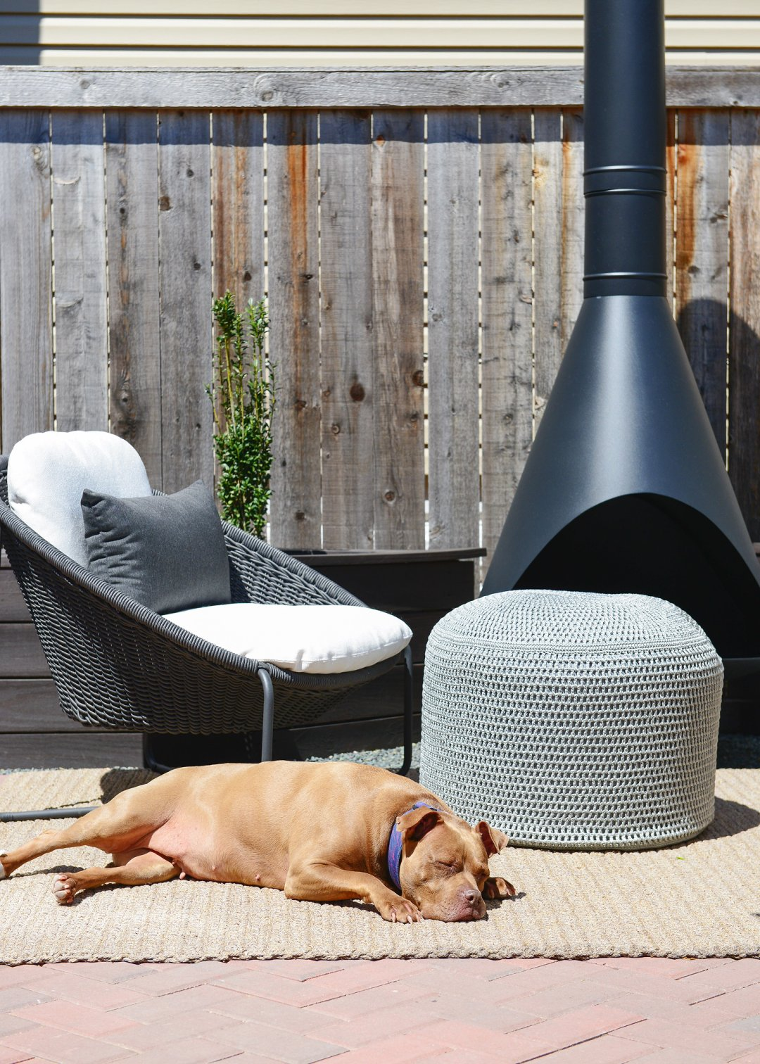 Dog laying on rug next to grey pouf and black wicker chair with white cushion and grey pillow and black fireplace in background