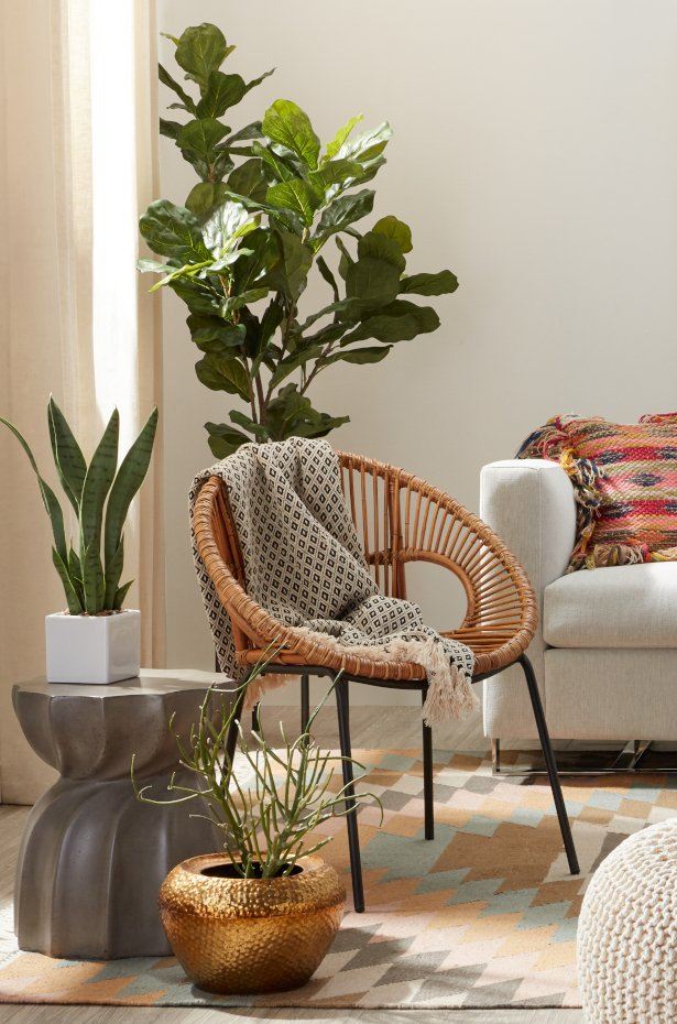 Add plants for extra beauty in your global styled room