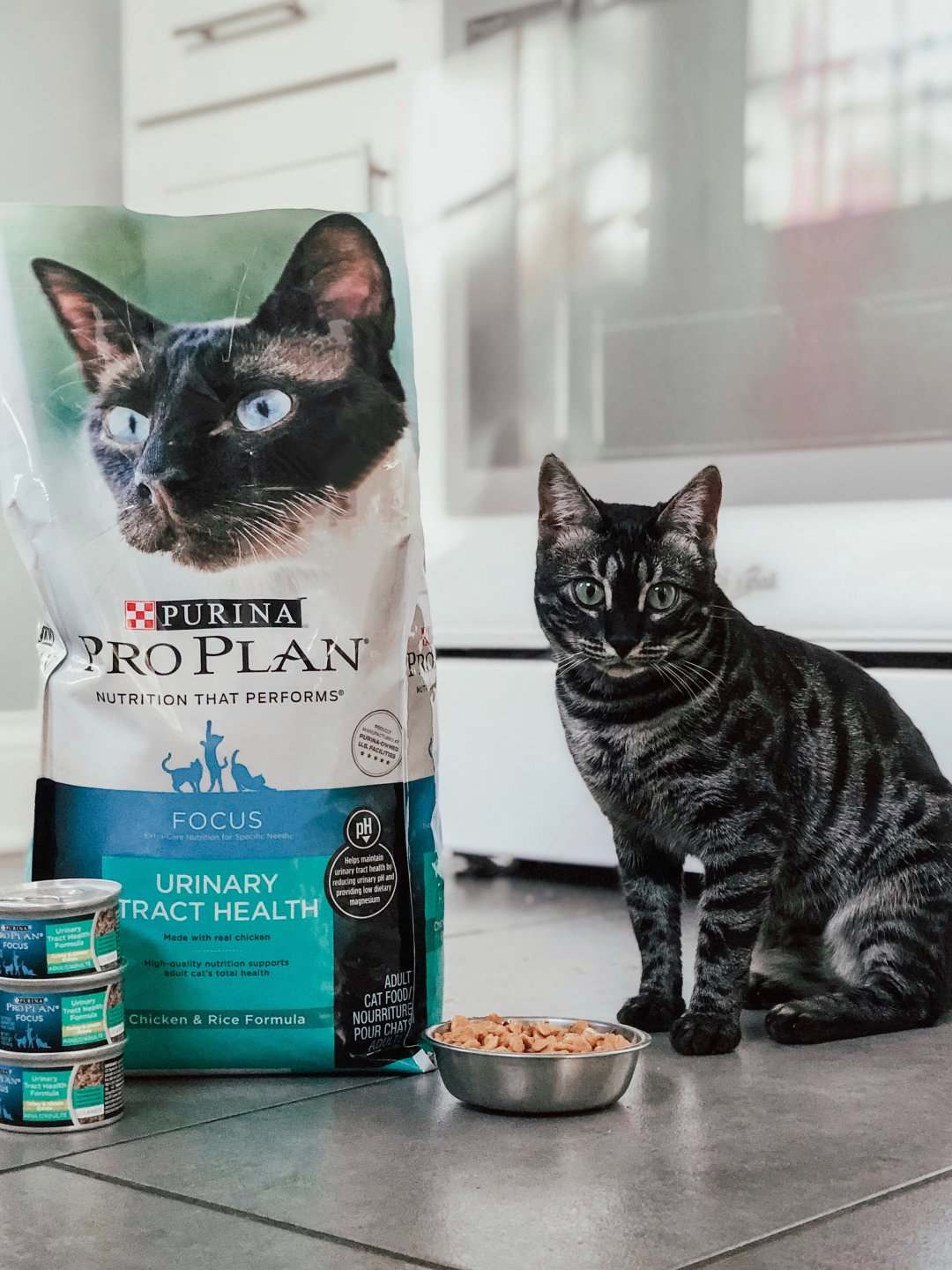 How to Ensure Your Pet is Getting the Best Nutrition