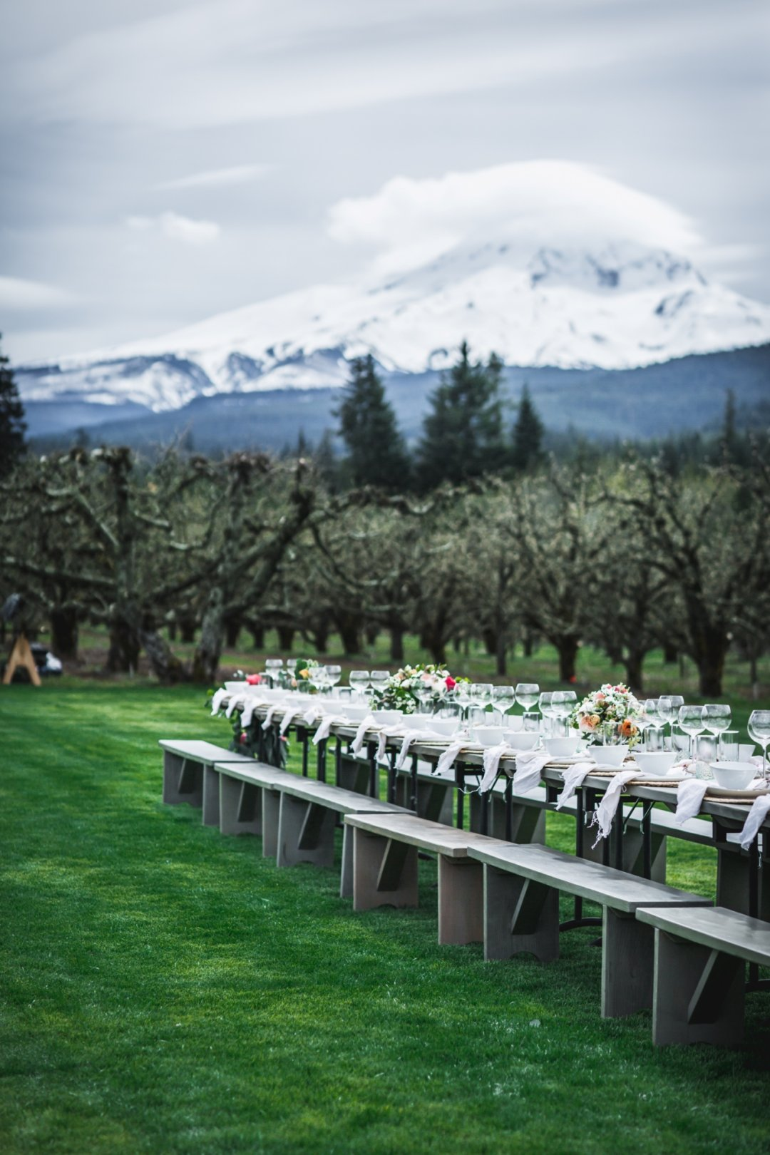 View of long table with flowers and mountains in background