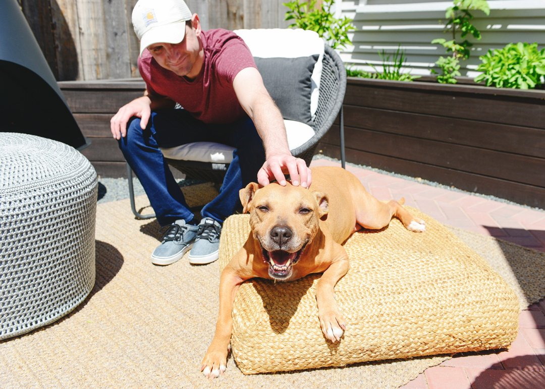 Man sitting on chair petting dog that's laying on floor pillow