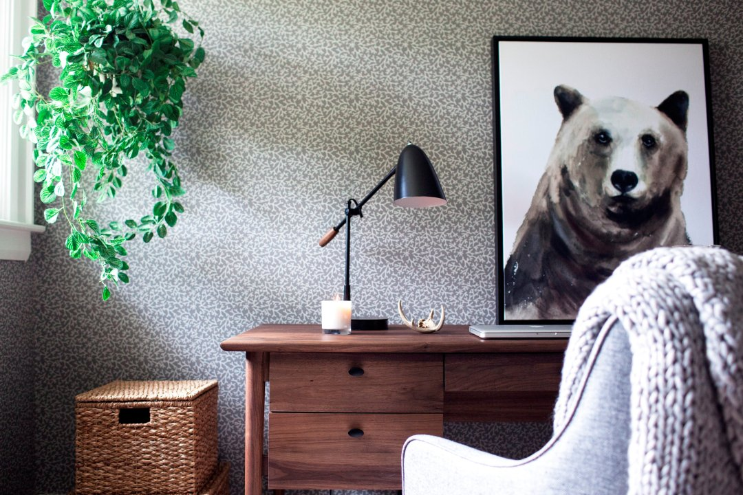 Desk with chair and bear print and hanging plant