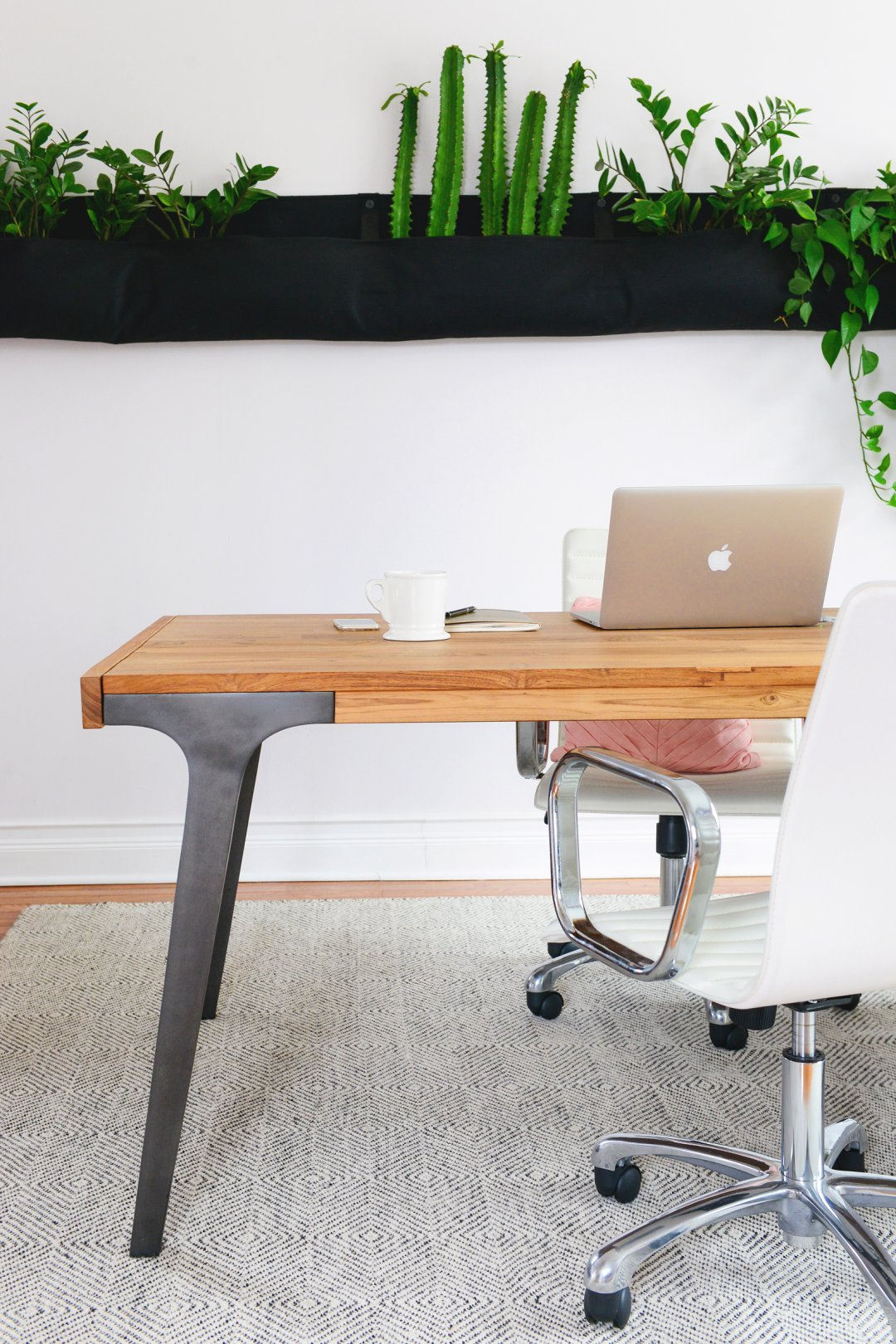 two chairs surround a large wood table with a computer on top and a variety of plants are displayed on a shelf in the background