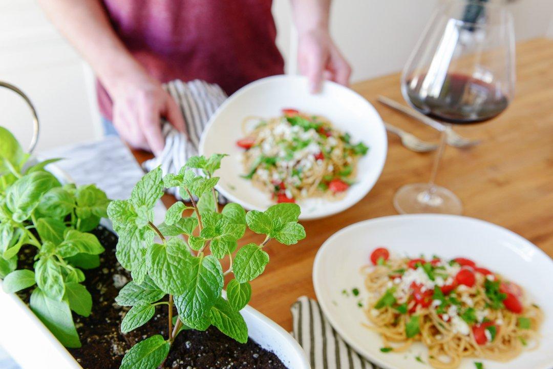 Herbs in window planter