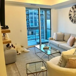 Manhattan Custom Apartment Sofa - Custom Sofas - Living | Urban Barn