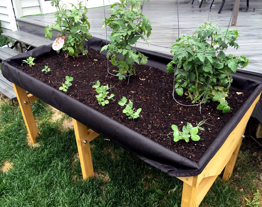 Backyard VegTrug - elevated garden planter for growing fruit, vegetables and herbs